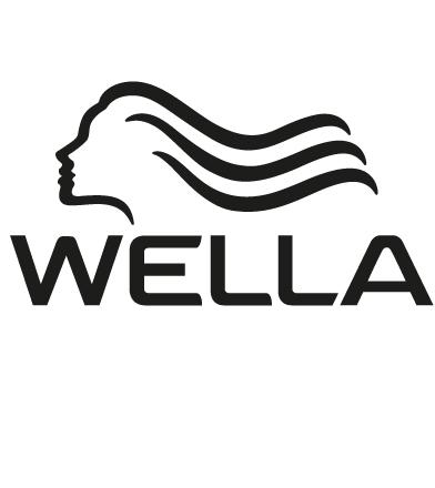 wella-acquisition