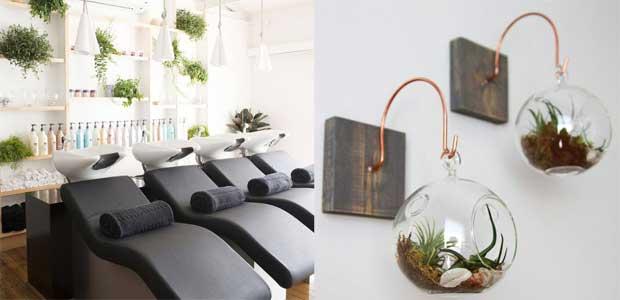 salon decor ideas plants