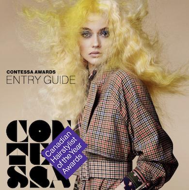 The Contessa Awards Entry Guide!