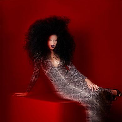 Contessa 33 Finalist Collection – Michelle Pargee